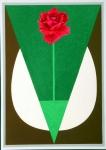 18-1970-Tulipán-vegyes-..........